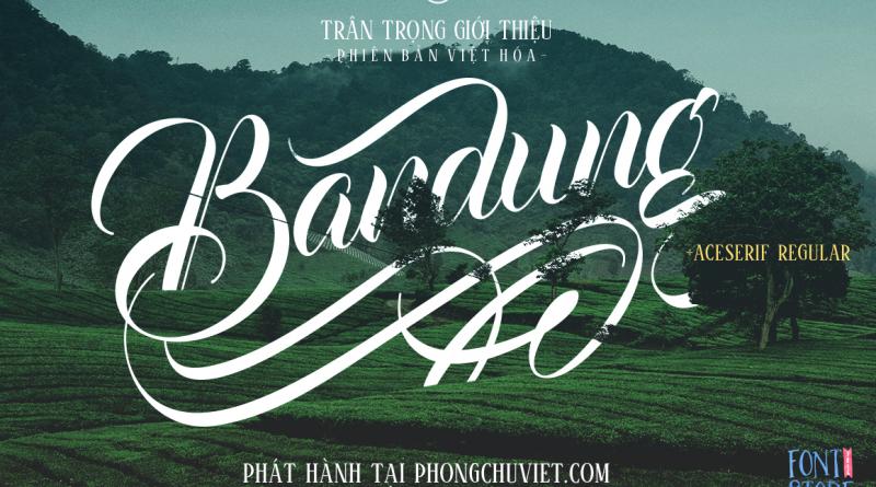 Việt hóa | FS Bandung + Aceserif: Nghệ thuật Calligraphy