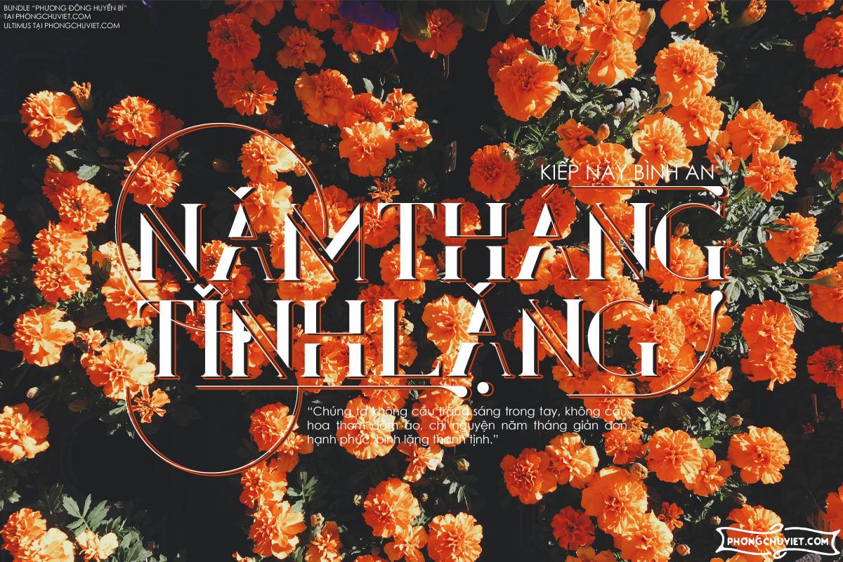 Việt hóa | FS Ultimus: Serif thanh lịch với hệ thống ornaments độc đáo